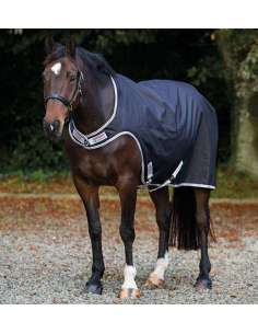 Amigo Walker HORSEWARE